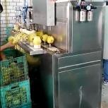 Машина для яблоко чистки и удаления сердцевины 400 кг/час, Омск