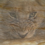 Фрески на гибком камне(каменные обои), Омск