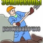 Очистка участков от растительности, мусора, уборка, Омск